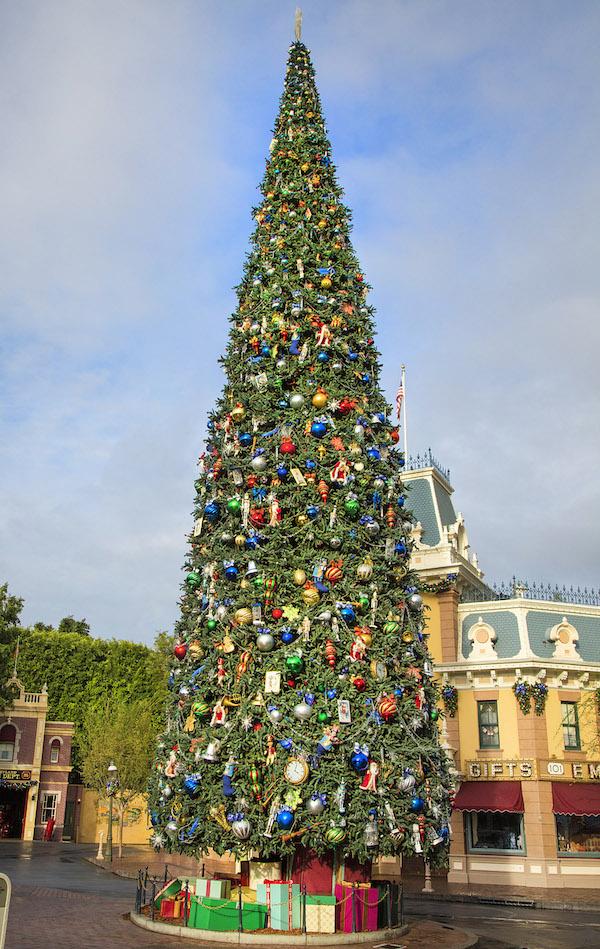 Majestic Christmas Tree 11_15_DL_15109 (1)